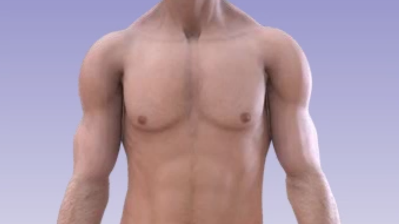 Body Contouring Implants Chest Pectoral Animation Understand Com